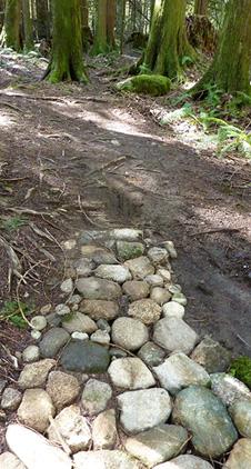 mission trail rock path