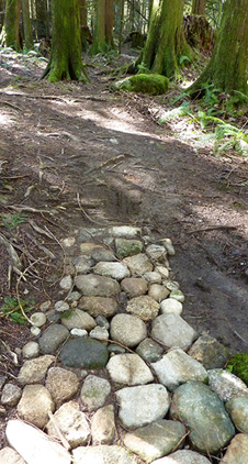 mission trail rock path